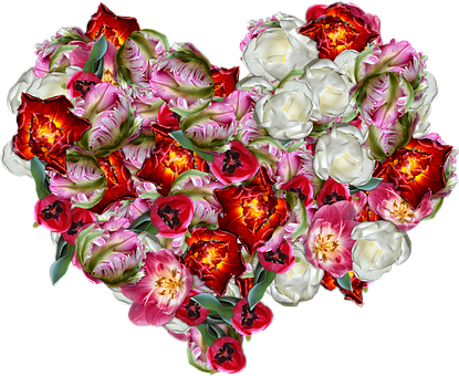 Tulips, Heart, Flowers, Spring, Decoration, Graphics