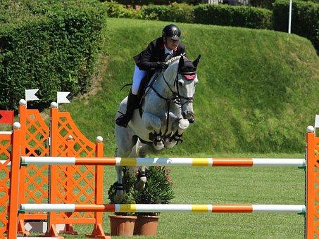 Sport, Saddle, Reiter, Horse, Jumper, Show Jumping