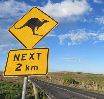 Road, Highway, Guidance, Traffic, Signal