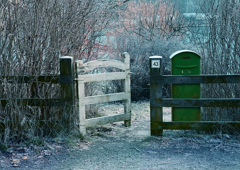 Fence, Outdoors, Wood, Home, White, Nature, Gate, Green