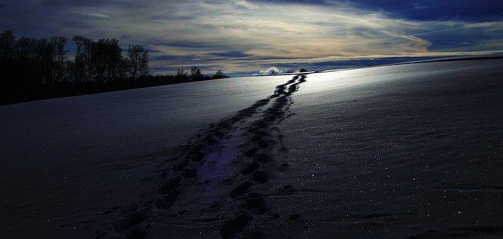 Snow, Nature, Dusk, Footprint, Abendstimmung, Winter