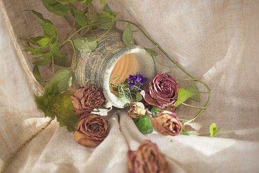 Flower, Ornament, Plant, Background, Celebration, Rose