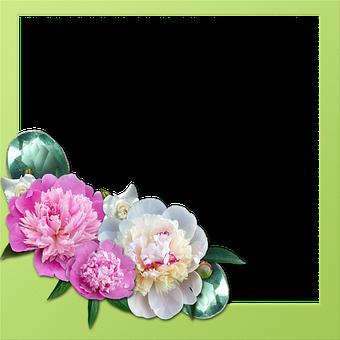 Frame, Peony, Roses, Gems