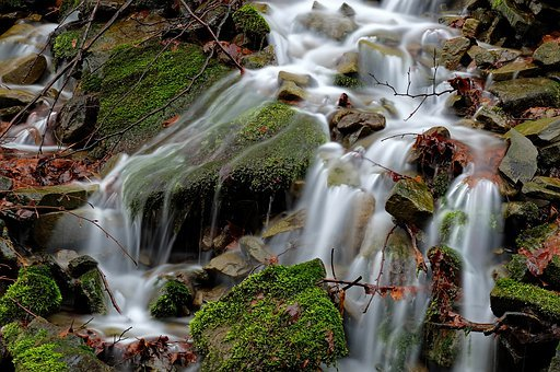 Monolithic Part Of The Waters, Waterfall, Nature, Leaf