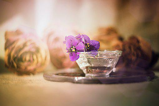 Flower, Table, Candle, No One, Food, Background, Ease