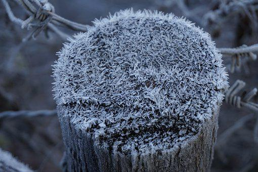 Nature, Winter, Frost, Cold, Winter Cold, Winter Magic