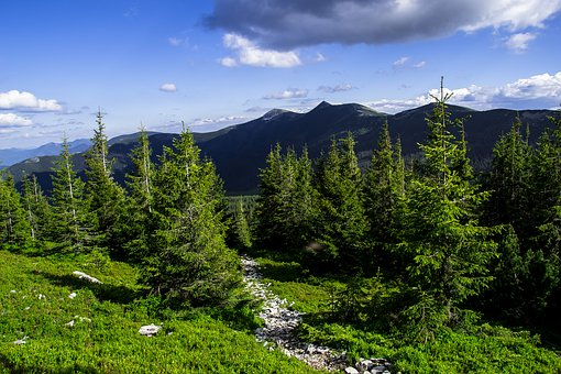 Mountain, Nature, Landscape, Wood, Panoramic, Sky