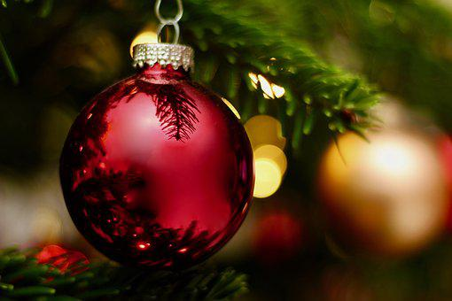 Christmas, Winter, Shiny, Ball, Ornament, Fir, Tree