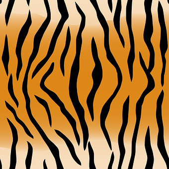 Animal, Pattern, Skin, Stripes, Tiger, Brown Animals