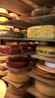 Cheese Dairy, Warehouse Shelf, Agriculture