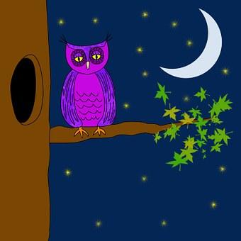 Owl, Purple, Night, Stars, Moon, Tree, Leaves, Leafy