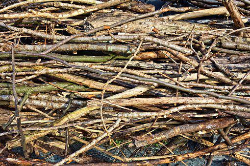 Wood, Chopped, Branches, Firewood, Sticks