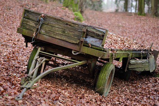 Wood, Agriculture, Cart, Forest, Leaves