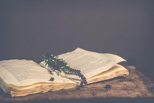 No Person, Open Book, Book, Vintage, Old, Still Life