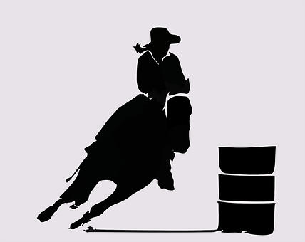 Rodeo, Western, Cowboy, West, Wild, Horse, Riding