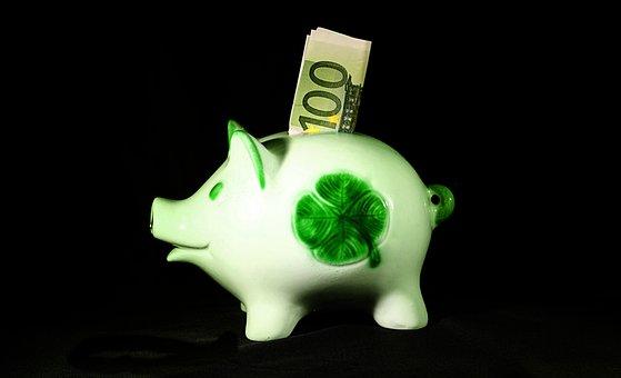 Money, Save, Sparscwein, Euro, 100, Finance, Piggy Bank