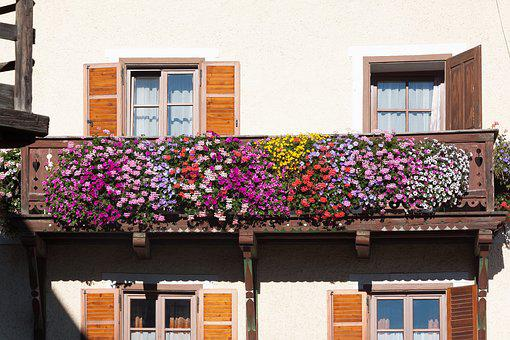 Balcony, Floral Decorations, Architecture, House