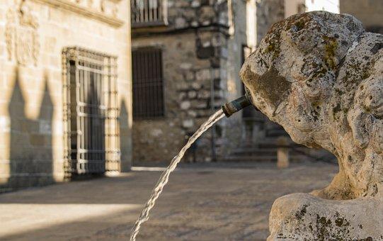 Source, Leon, Water, Medieval, Monument, Sculpture