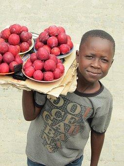 Zambia, Seller, Boy, Fruit