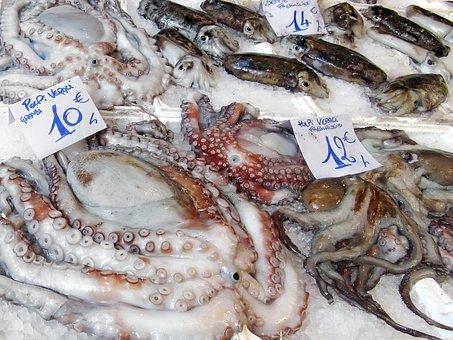 Fish Market, Market, Octopus, Cuttlefish, Calamari