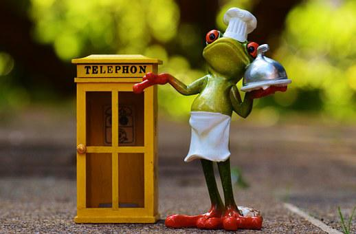 Frog, Cooking, Eat, Order, By Phone, Pizzaexpress