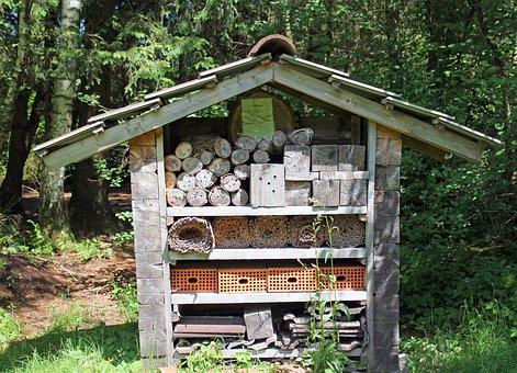 Insect Hotel, Nesting Help, Wild Bees, Insect