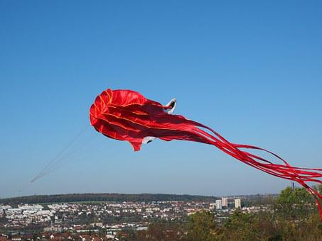 Kite Flying, Dragons, Octopus, Squid, Red, Autumn, Sky