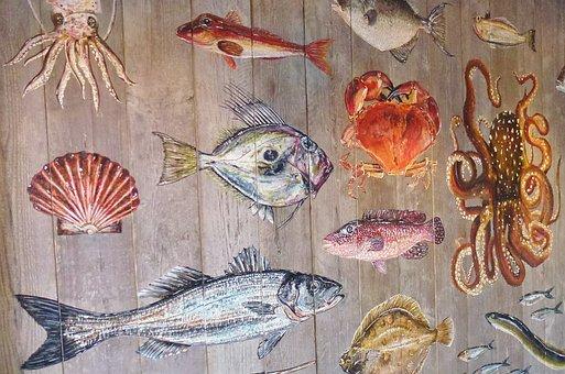 Fish, Sea Animals, Meeresbewohner, Water Creature