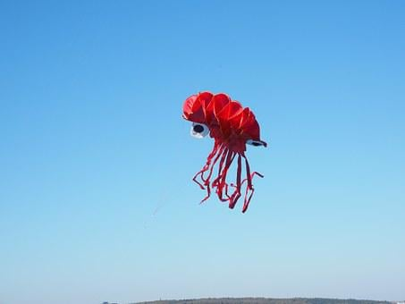 Dragons, Octopus, Squid, Red, Kite Flying, Autumn, Sky