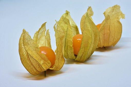 Physalis, Fruit, Berry, Orange, Food, Healthy, Vitamins