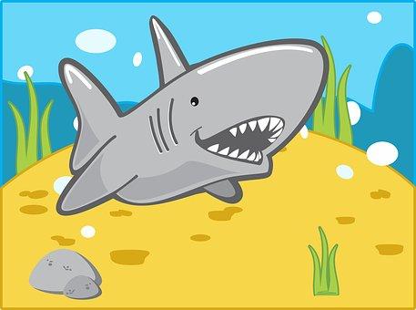 Sketch, Animal, Closeup, Kill, Shark, Tropical, White