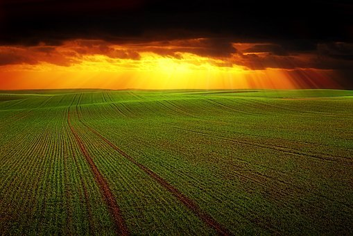 Field, Landscape, Agriculture, Nature, Panorama, Empty