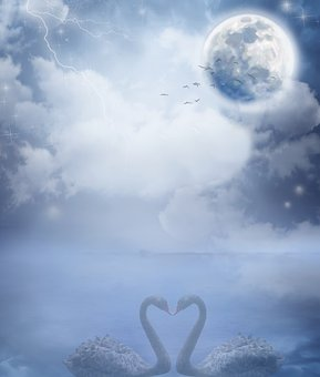 Background, Stationery, Guestbook, Sky, Moon, Swans
