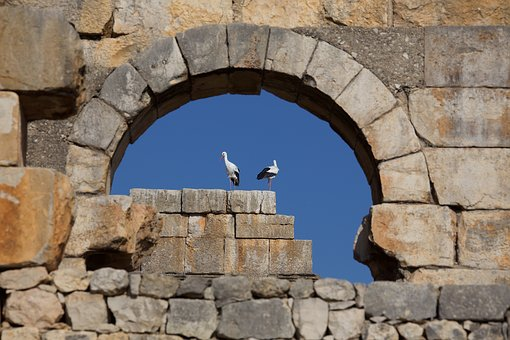 Stone, Wall, Architecture, Old, Antiquity, Storks