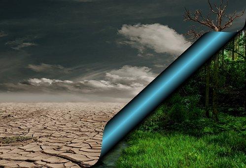 Global Warming, Desert, Dry, Climate Change, Green