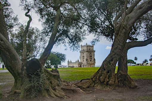 Tree, Nature, Landscape, Travel, Outdoors, Architecture