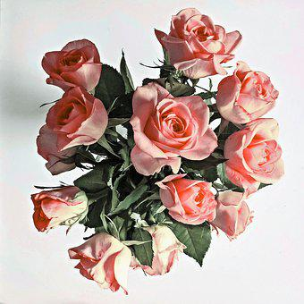 Flowers, Roses, Bouquet Of Roses, Noble Roses