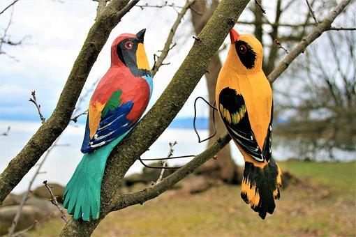 Para, Romance, Birds, Wooden, Nature, Pen, Beak