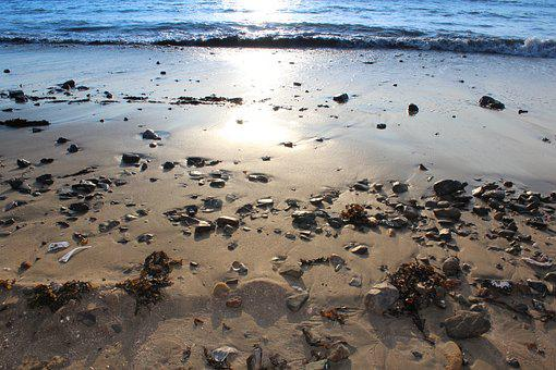 Beach, Seashore, Sand, Water, Sea, Tide
