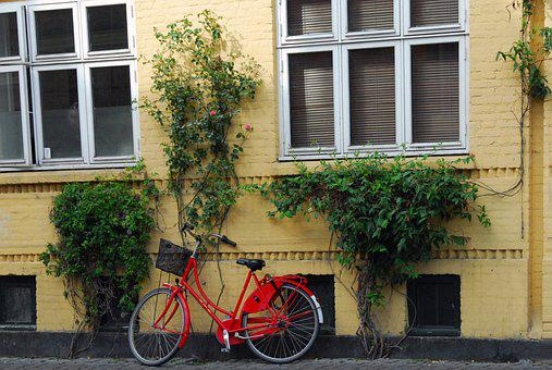 House, Window, Architecture, Street, Building, Bicycle