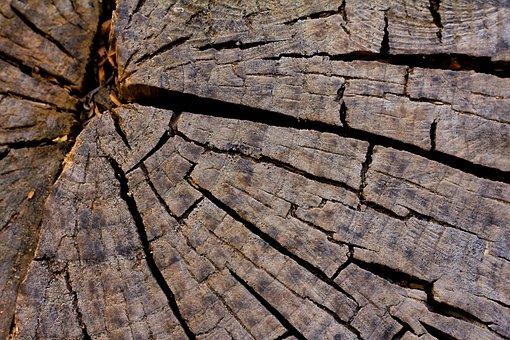 Rough, Nature, Pattern, Textile, Bark, Texture, Dry