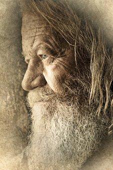 Old, Man, Male, Face, Beard, Portrait, Senior, Person