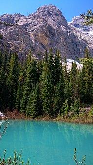 Water, Nature, Mountain, Lake, Travel, Banff, Alberta