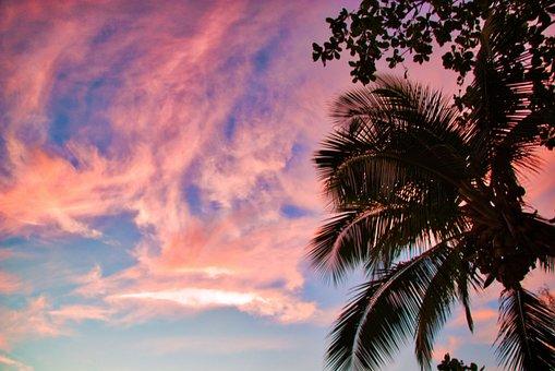 Nature, Sunset, The Sun, Sky, Summer, Palma, Thailand