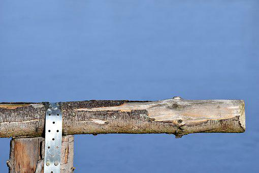 Wood, Fence, Branch, Wood Fence, Background