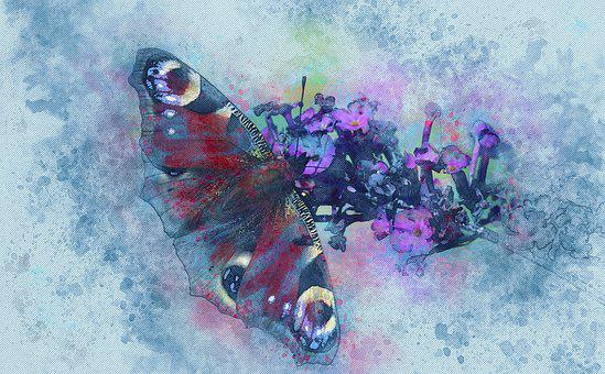 Peacock, Butterfly, Insect, Flowers, Pink, Summer