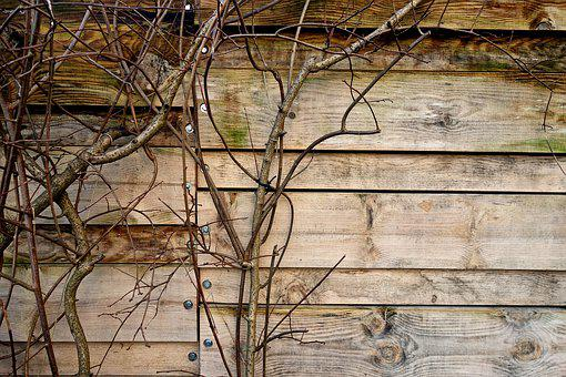 Fence, Wooden Fence, Planks, Grain, Pattern, Creeper