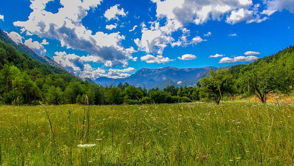 Panoramic, Nature, Landscape, Sky, Tree, Lawn, Summer