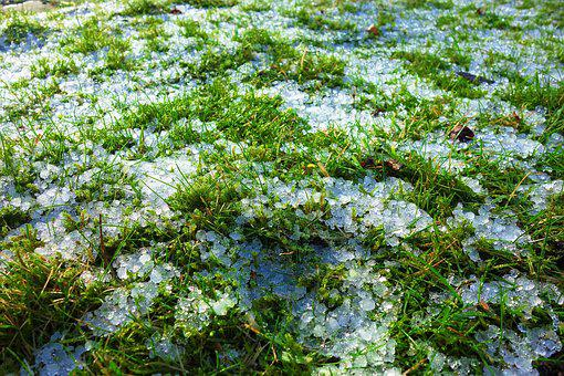 Grass, Field, Ice, Ice Crystals, Frost, Frozen