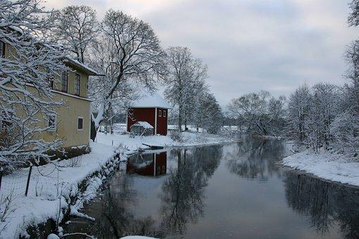 Winter, Snow, Cold, Nature, Tree, Frost, å, Svartån